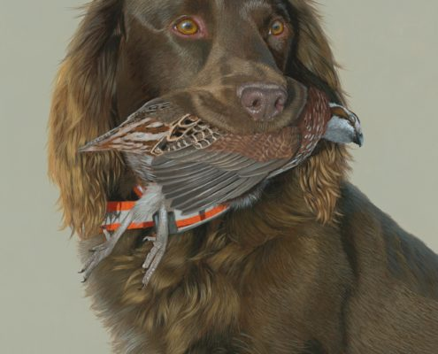 Hank WIth Quail